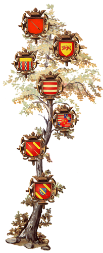 arbre blason famille chimay